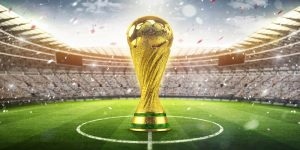 FIFA World Cup Guide