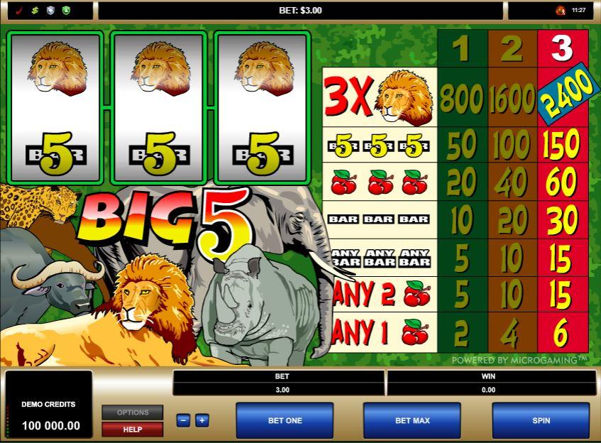Big 5 Slot Gameplay