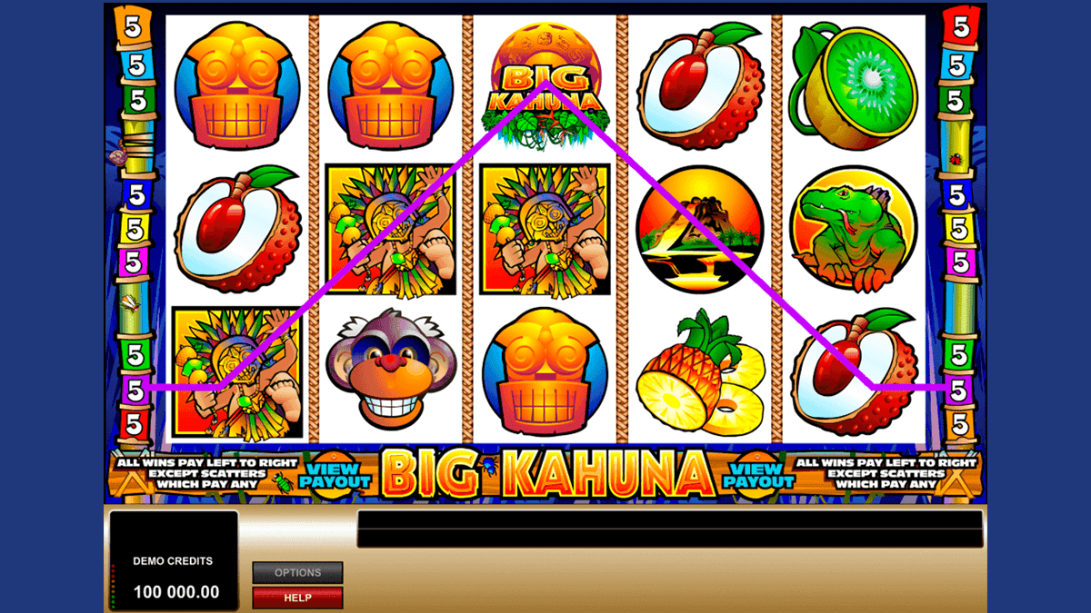 Big Kahuna Slot Screenshot