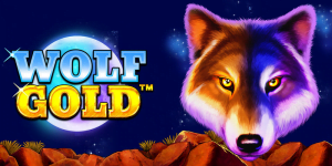 Wolf Gold Slot Review – RTP, Features & Bonuses