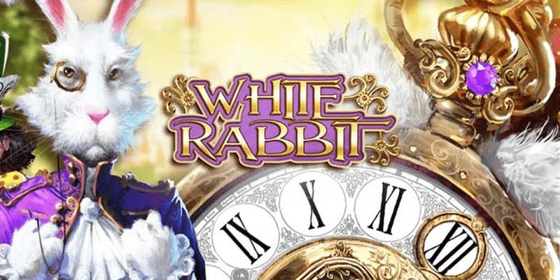 White Rabbit Slot Review – RTP, Features & Bonuses